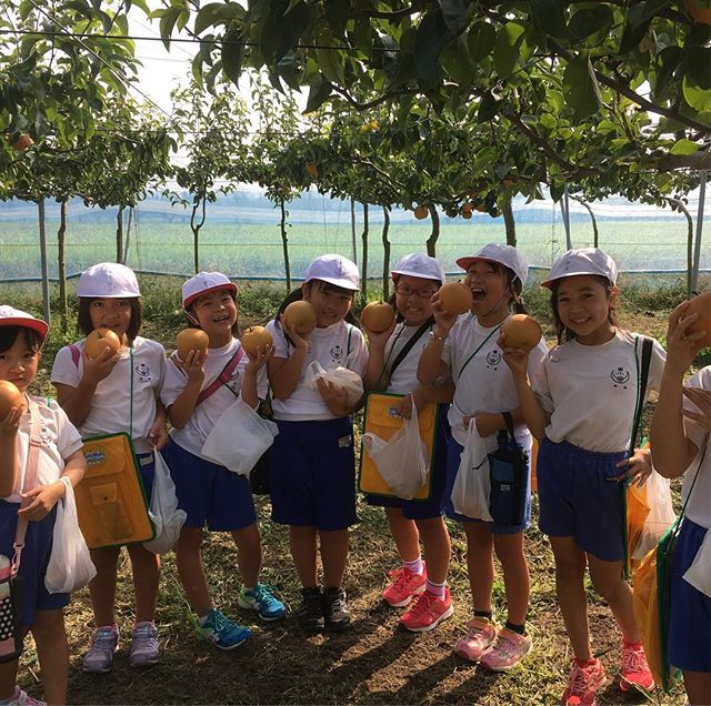 地元の小学生が梨狩り体験に遊びに来てくれました。
